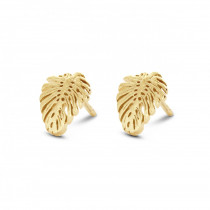 Tropic Earrings